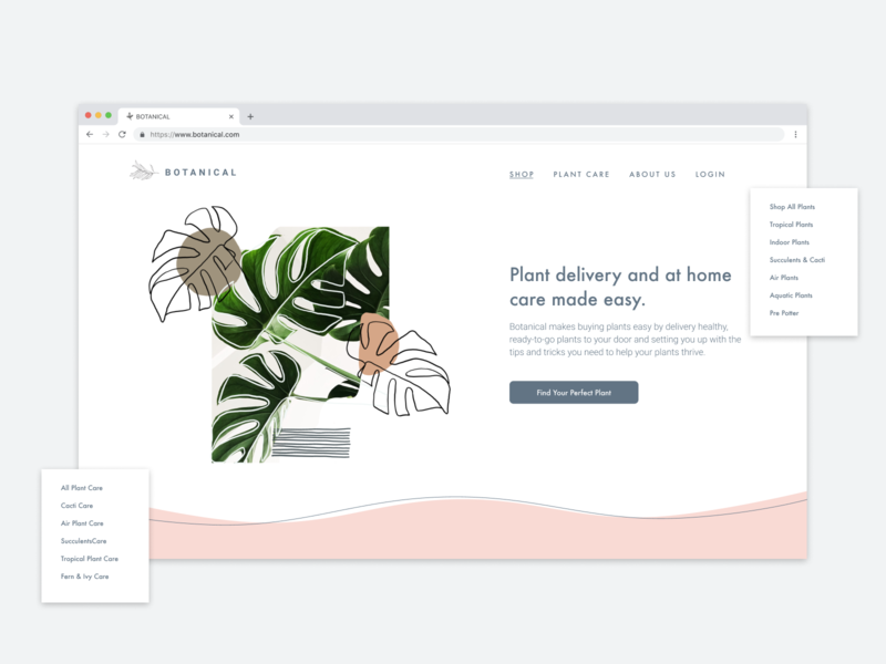 Homepage Redesign plant shop homepage user interface design daily 100 challenge dailyui day3 digital illustration illustration design ui