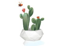 Cactus illustration.