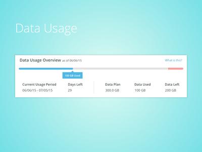 Data Usage Meter 1