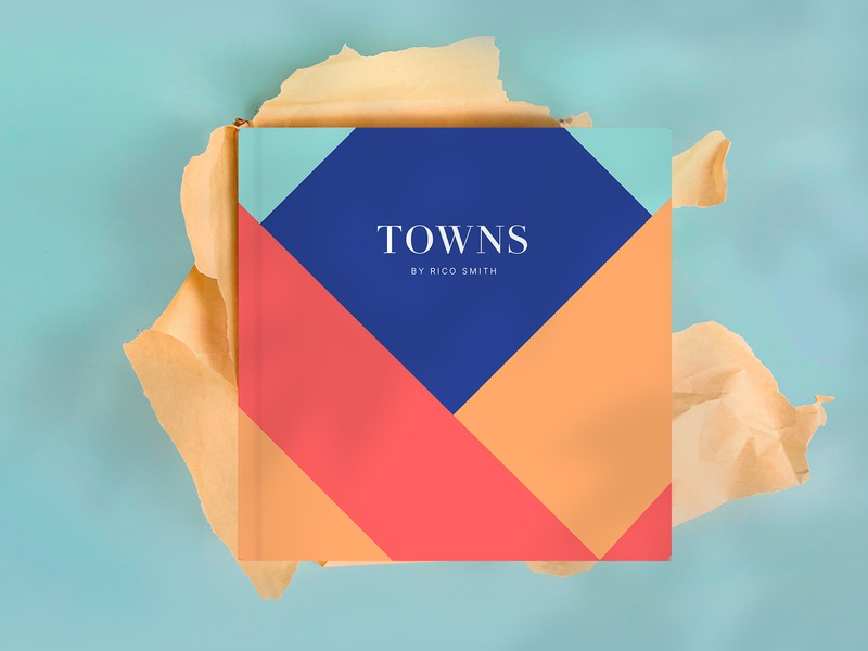 Towns Book cover