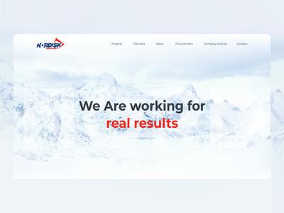 Nordisksikkerhet ui uiux illustration design website creative concept web-mosaica web-design