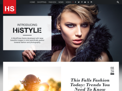HiStyle Website Concept