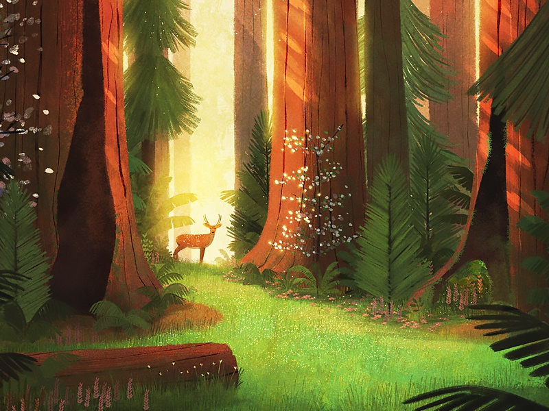 59 Parks sun trees plants ferns forest deer park illustration
