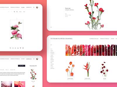 Flower Channel Design (Desktop) white web design uiux uiuxdesign ui ux uidesign ui product design red pink desktop minimalistic minimal interface flowers design colorful clean app