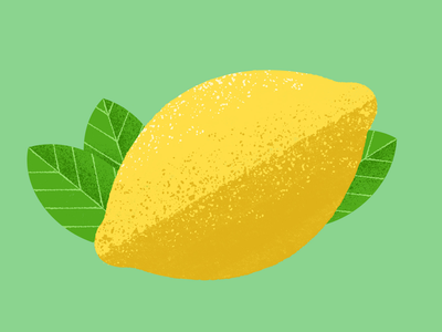 Lemon lemons fun tart juicy juice lemonade summer fruits yellow skin leaf leaves colorful color fruit texture illustrator illustrate illustration lemon