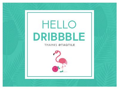 Hello Dribbble 2