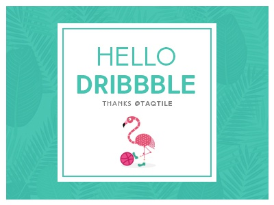 Hello Dribbble 2 colors flamingo hellodribbble