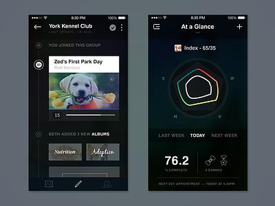 Feed+Dash psd iphone6 ui social minimal mockup icons pets chart albums profile