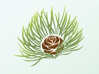 Rejected Pine