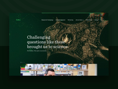 Calico Labs threejs canvas green bio biotech science cells cell particles webgl 3d animation mainpage design homepage web webdesign website ux ui