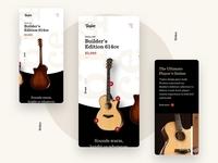 Taylor Guitars . Builder's Edition