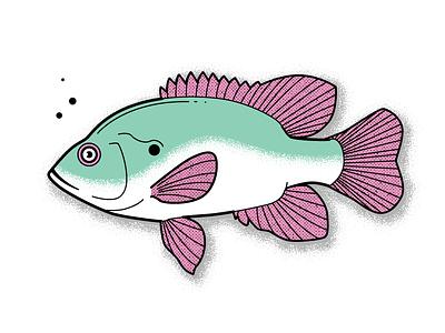 Sunfish Variant sunfish fish