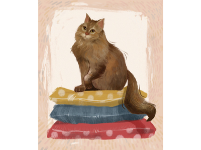 Sonya the cat animal illustration animal cute pets pet cat illustration