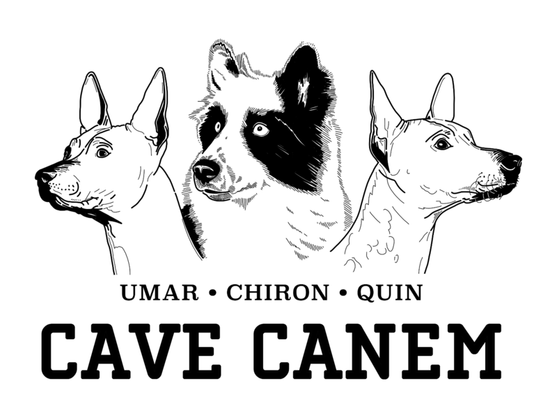 Dog Crew - Cave Canem animal canem cave bw lineart sketch illustration dog illustration dog logo dogs dog