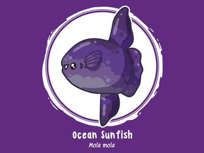 Huevember 15 // Ocean Sunfish