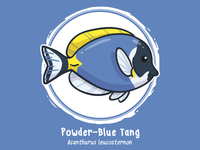 Huevember 19 // Powder-Blue Tang