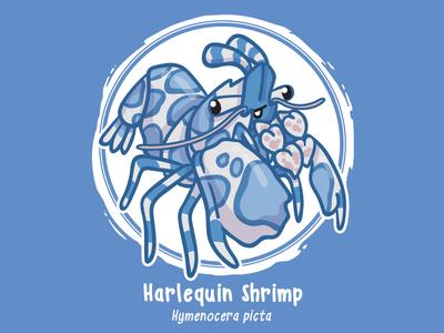Huevember 20 // Harlequin Shrimp