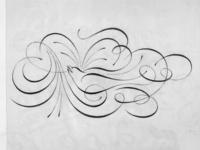 Calligraphic swallow
