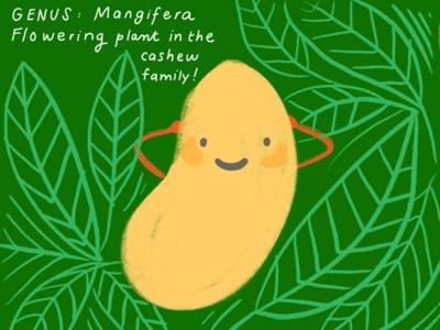 Happy fruits: Mango