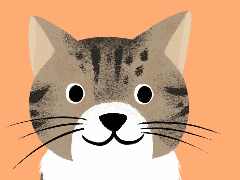 Hello Dribble pets kids illustration cats