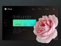 PLOUGH: e-commerce site for gardeners