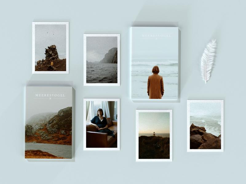 Meeresvogel Prints cinema4d benharthun pnw photography 3d renderer corona c4d meeresvogel
