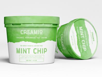 Ice Cream Plastic Jar Packing Design