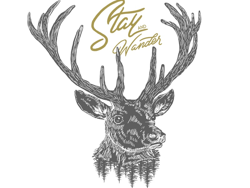 Stay And Wander typography design illustration branding