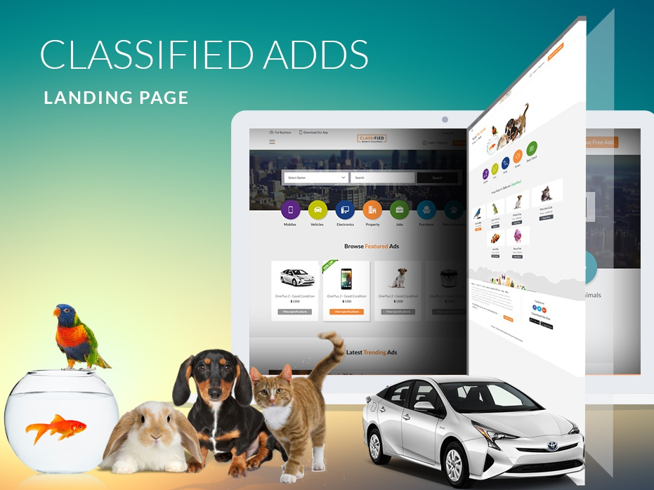 Classified Adds Landing Page website banner website design perth graphic design ui design website landing page landing page website design