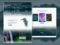 Nature Conservation Group Full Design activism charity nature ecosystems animals earth environment conservation ux layout imagery website branding web design web ui landing page design