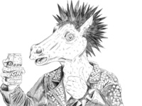 Burton Horse Punk