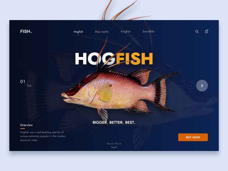 Fish Landing Page / Product Page sketchapp ui design minimal clean fish landing page ui product page landing page web page