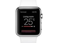 Thermostat rebound
