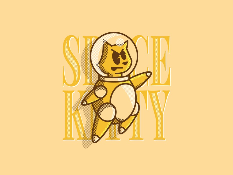 Space kitty to the rescue animal character graphic design art vector illustration graphic design feline cats cat space