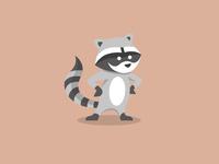 Raccoon Character