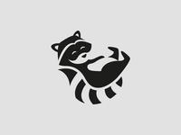 Raccoon Character Logo