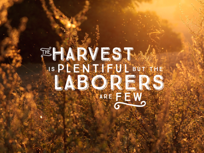 Plentiful Harvest Typography reaping laborers typography prayer scripture matthew 9:37 harvest illustration graphic design plentiful wheat sowing