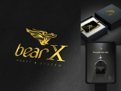 BearX - Money System - Branding