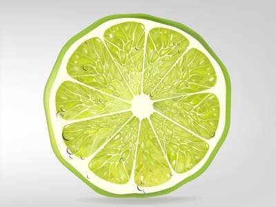 Lime Slice fresh isolated tempalte smart green realistic drop juice stylish natural creative illustration design clean citrus vector slice lime