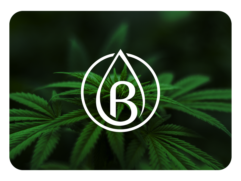 Bazi - Cannabis Tinture Logo Design