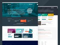 Kount - Online Experience Redesign