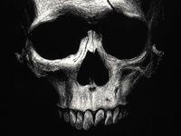 Scratchboard Skull