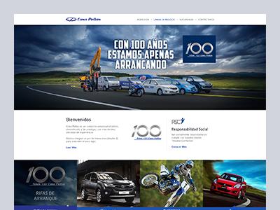 Casa Pellas website design