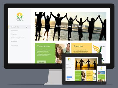 CEA Nicaragua design responsive website
