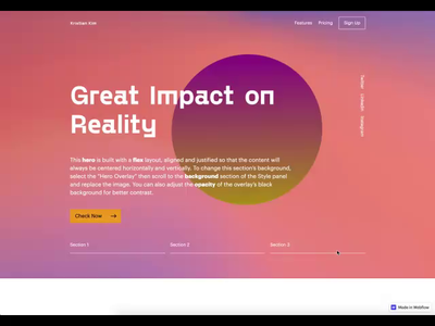 Webflow Website Project animation webdesign