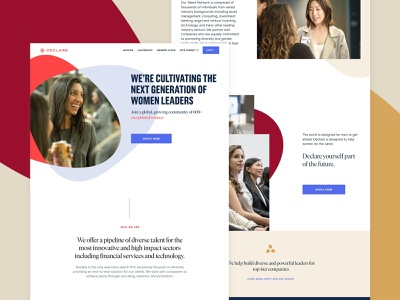 Declare - New Website web burgundy layout redesign web deisgn