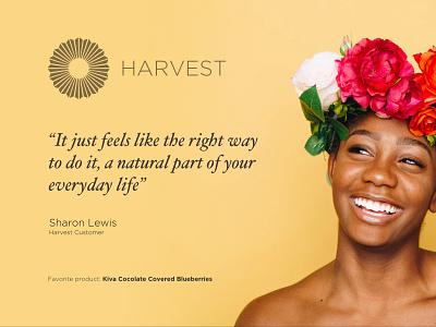 Harvest retail brand and marketing branding typography sanfrancisco cannabis retail logo