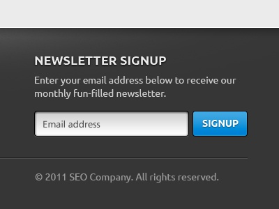 Newsletter Signup - Footer website web web design footer newsletter signup input button blue ui
