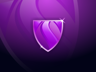 Shield Logo Idea graphic design website app type web art clean lettering typography ui icon logo illustration minimal identity brand branding vector flat design