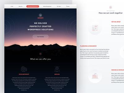 Website for Software Company webdesign web design website